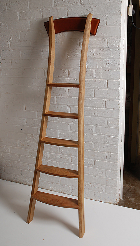 A Library Ladder For A Physician